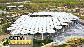 《经济信息联播》 20190430| CCTV财经