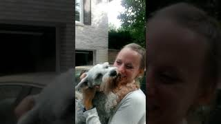 Dog passes out from overwhelming joy | #CaseyTheDog thumbnail
