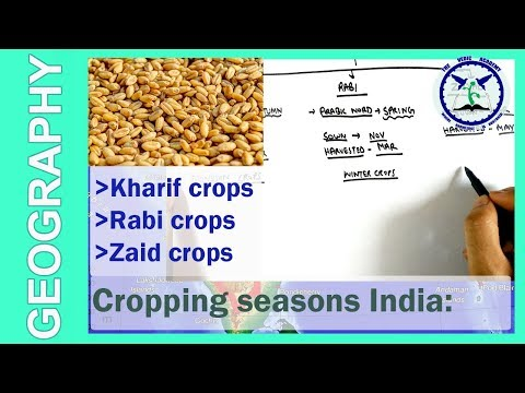 Cropping Seasons of India : Kharif, Rabi and Zayad   Cash crops   by TVA