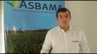 José Francisco Zúñiga Cotes, Presidente Ejecutivo de Asbama