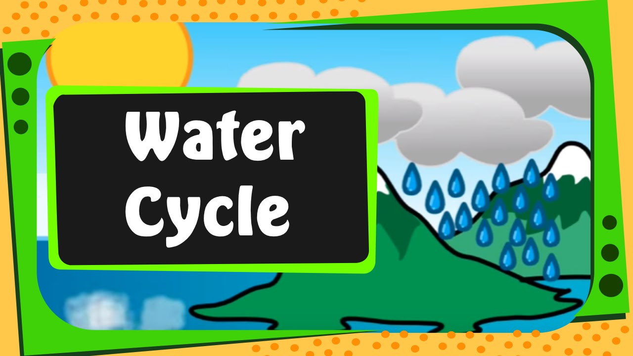 hight resolution of Science - What is Water Cycle - English - YouTube