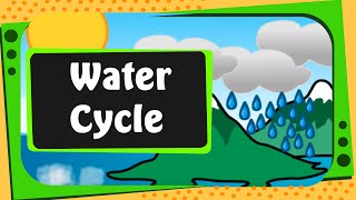 Science - What is Water Cycle - English