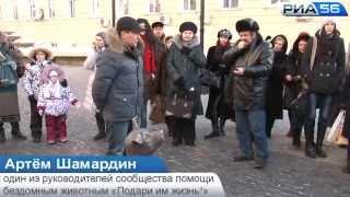 Оренбург. Открытие памятника-копилки бездомной собаке. 10.12.2014