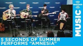 "5 Seconds of Summer ""Amnesia"" Live @ SiriusXM // Hits 1"