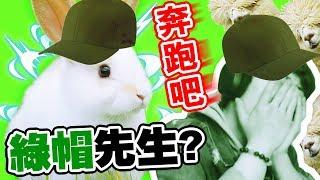 【奔跑吧!綠帽先生~】🐰史上最囧「電流陣」...😵令人眼都花的草泥馬!!!