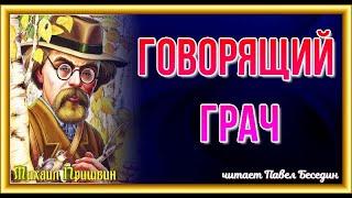 Говорящий грач  Михаил Пришвин  читает Павел Беседин