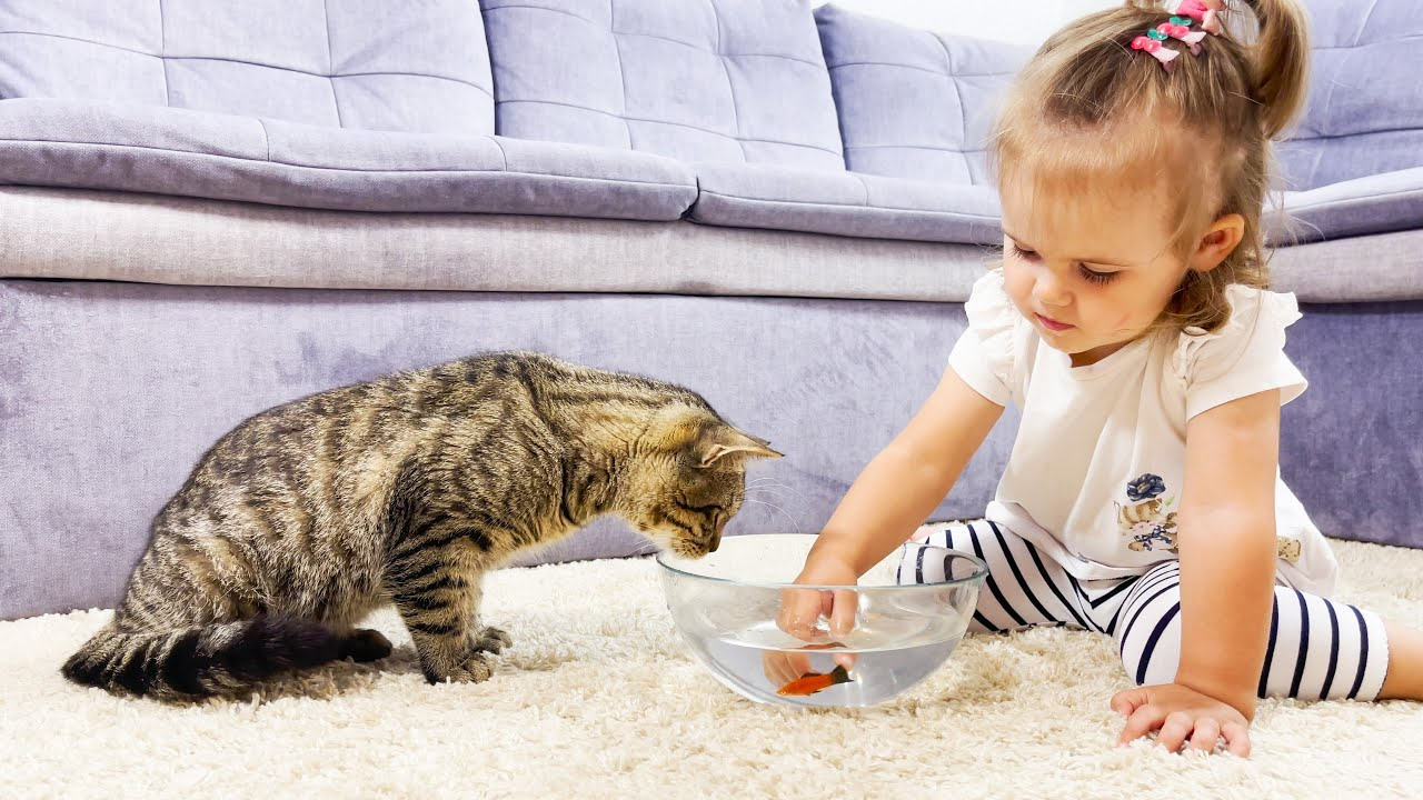 Funny Reaction of a Cute Baby and Cat to Fish