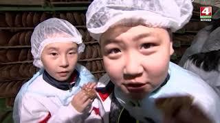 Китайские дети в Беларуси [БЕЛАРУСЬ 4  Могилев]