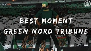 BEST MOMENT GREEN NORD TRIBUNE