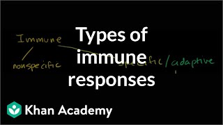 Types of immune responses: Innate and Adaptive.  Humoral vs. Cell-Mediated