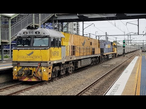 Sydney Trains Vlog 1457: Granville Trainspotting + Indian Pacific