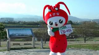 神奈川県海老名市「えび~にゃ」x「コール・ミー・メイビー」