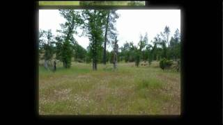 Land For Sale In Shasta County, CA - 9.8 Acres Of Land In Bella Vista, CA