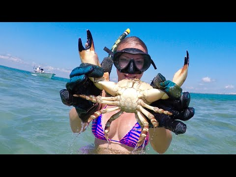 Catching Stone Crab BY HAND! Catch & Cook