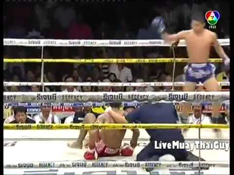 Best Muay Thai Knockouts (2013)