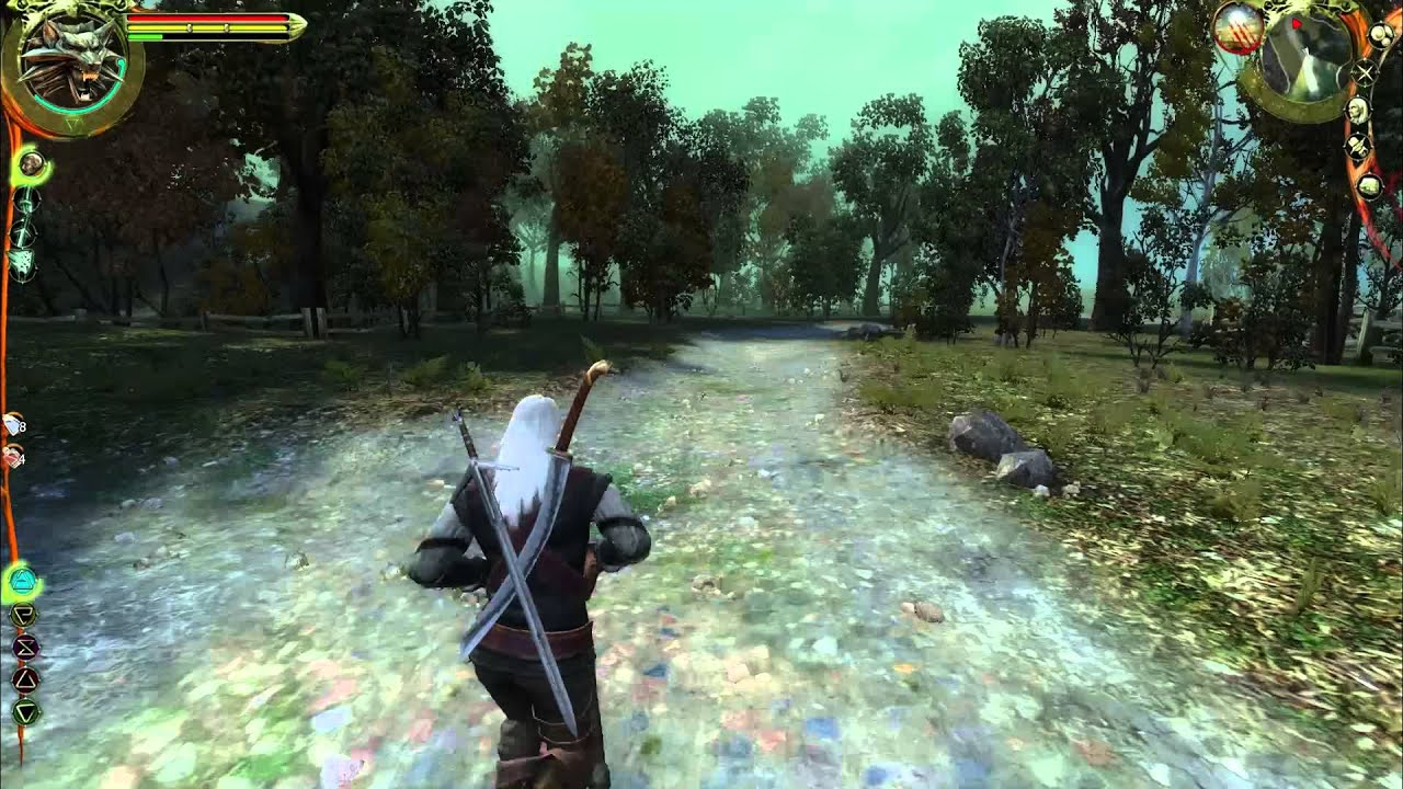 The Witcher Wellen