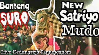 Solah Rancak Banteng Suro Jaranan New Satriyo Mudo Live Kedugrejo Tanjunganom