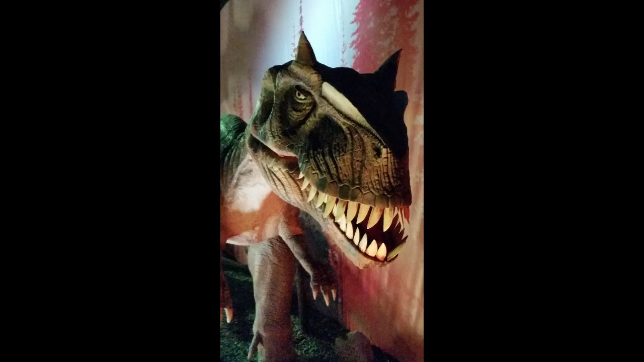 dinosauri jurassic park film streaming full ita youtube. Black Bedroom Furniture Sets. Home Design Ideas