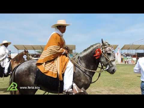 I Concurso de Caballo Peruano de Paso