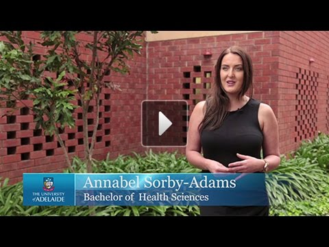 Bachelor of Health Sciences | The Opportunities Are Endless