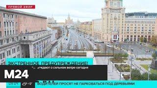 Смотреть видео Москвичей предупреждают о сильном ветре - Москва 24 онлайн