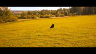 Диана Полушкина - Два ярких луча