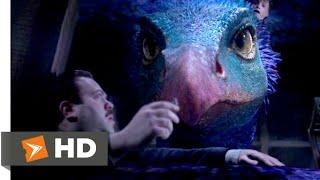 Фантастические твари и где они обитают (2016) - Оккамия сцена (7/9) | Movieclips