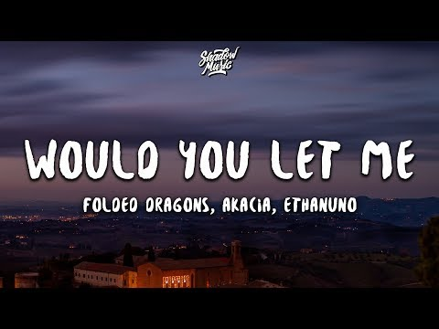 Folded Dragons AKACIA & ethanuno - Would You Let Me