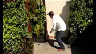 Movable Vertical Garden Planter By Maximize Design