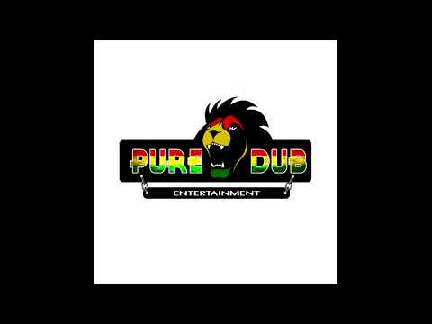 Ibu Baman & Dj Elvin Live ReggaeMixtape Pure Dub Entertainment