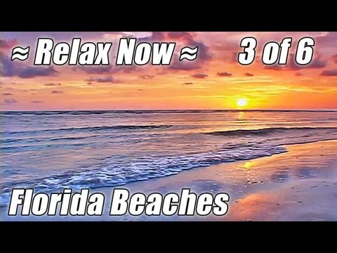 FLORIDA Ocean Sunset Video Relaxation Relaxing Waves Sounds BEACHES #3 Relax Sea Noises Bradenton