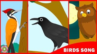 Birds Song   Learn about birds   Toddler Series   Kids song by Bindi's Music & Rhymes