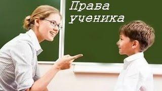 твои права и обязанности в школе и куда современные Печкины прячут послания (