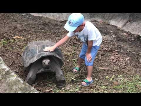 Seychelles, la digue island, union state park