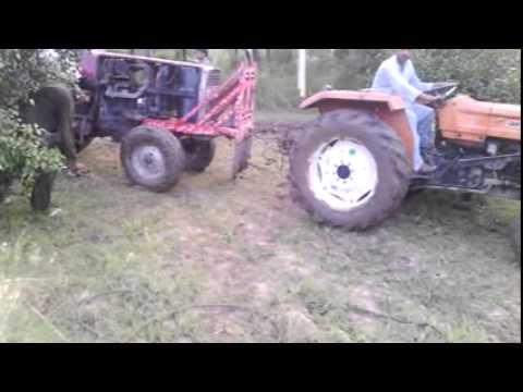 Belarus in mud