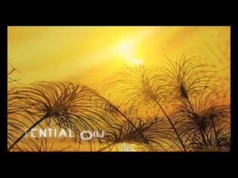 Масло Orofluido beauty elixir: отзывы, купить в Украине - YouTube