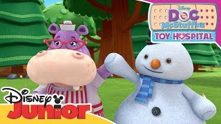 Sir Kirby's Stolen Medal 🎖 | Doc McStuffins | Official Disney Channel Africa