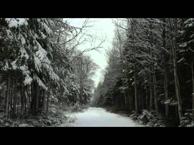 harry-nilsson-snow-george-hoff