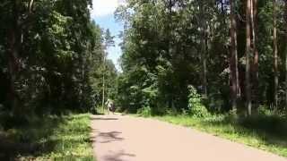 видео Летний чемпионат России среди ветеранов