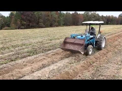 Jason Brown's Harvest