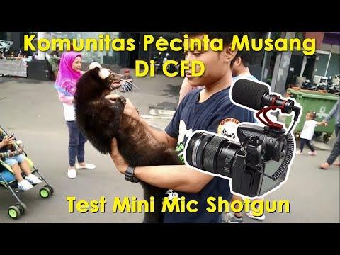 Test Mic Shotgun mini Comica CVM C10 Di CFD