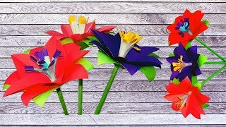 How to Make Beautiful and Easy Paper flowers|DIY paper craft|DIY Paper Artist#RD#