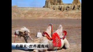 新疆 (南疆.北疆)--草原花季篇
