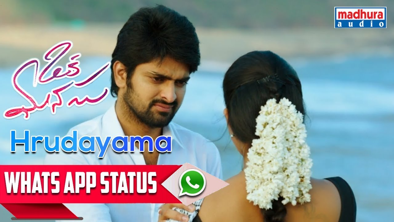 Best WhatsApp Status Hrudayama Video Song I Niharika Konidela I Naga Shaurya