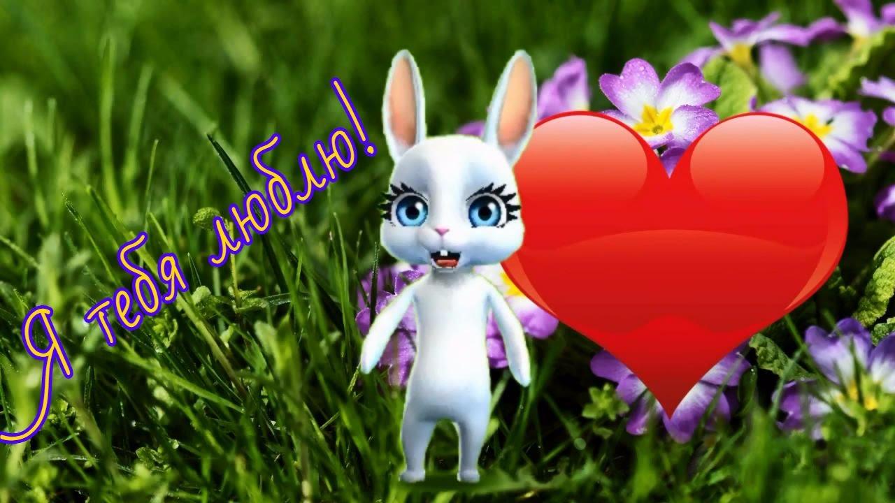 Можно написать, я тебя люблю открытка заяц