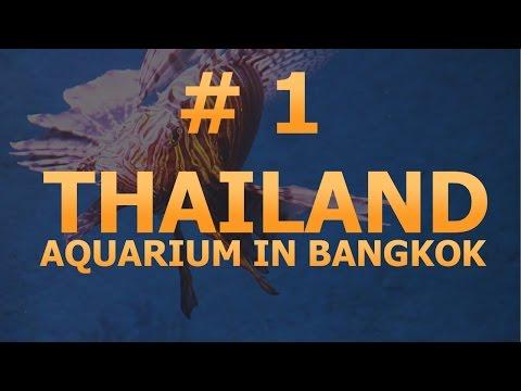 # 1 - Thailand. Bangkok. Aquarium Siam Ocean World. Video Tour.