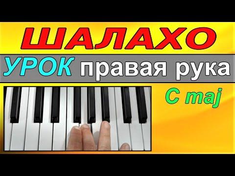 Шалахо~УРОК 1 пиано-синтезатор~Shalaxo~ДОмажор~Правая рука