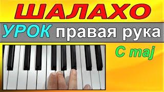ШАЛАХО~Урок по обучению на синтезаторе-фортепиано-ДО мажор(C)