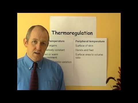 Thermoregulation 5, Body temperature
