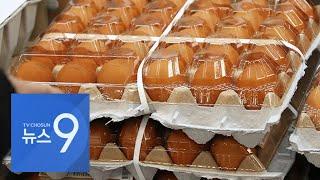 계란값 40개월만에 최고치…AI·한파에 밥상 물가 치솟아 [뉴스 9]